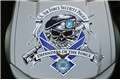 Security Forces Hood Graphic