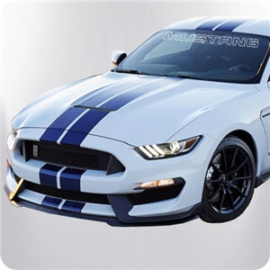 Ford Mustang Windshield Outline Decal